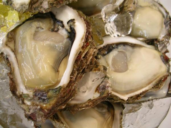 岩かき、牡蠣