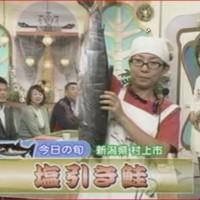 新潟県村上市 塩引き鮭