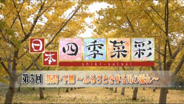 日本 四季菜彩 村上の鮭を求めて