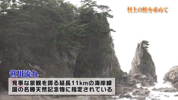 日本海の波の侵食でできた海岸線「笹川流れ」