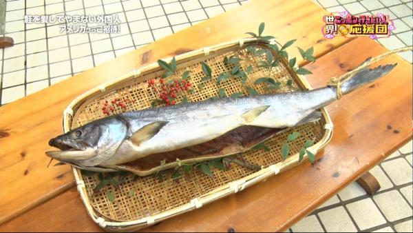 せっかくの塩引鮭ですがしばらくは食べないで皆さんとの思い出として家に飾っておきます