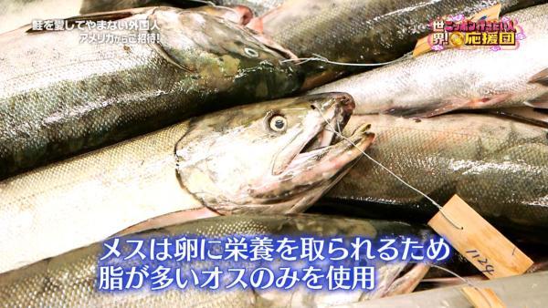 メスは卵に栄養をとられ脂が少ないので使うのはオスの鮭のみ