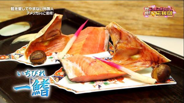 鮭が生まれたときから一生を終えるまで絶えず動かし続ける一鰭は生命の象徴
