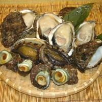 日本海荒海育ちの貝達(岩牡蠣、あわび・・)は一味違います