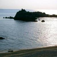 日本海極上天然貝をセットでお届け!岩牡蠣、アワビ、他