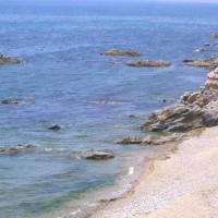 日本海笹川流れの天然あわび