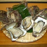 夏の一番人気商品がこの天然岩牡蠣(夏牡蠣)