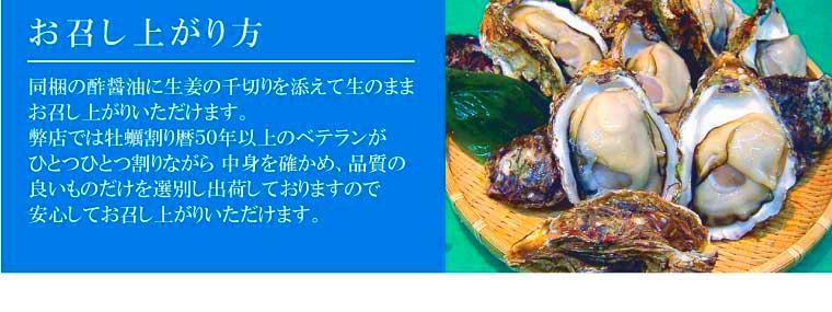 新潟県山北産天然岩牡蠣