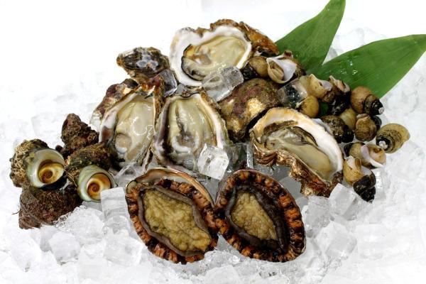 あわび、岩牡蠣、さざえ、煮ばい貝 天然貝セット