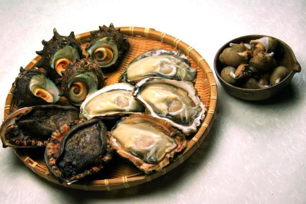 日本海天然貝セット(岩牡蠣、アワビ、サザエ、煮バイ貝)