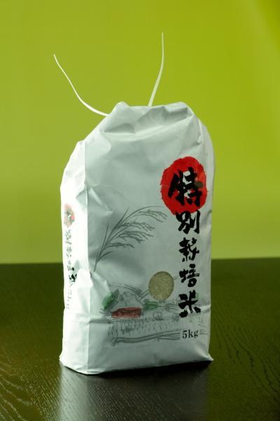 うおや特選米(岩船産コシヒカリ)