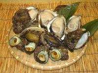 新潟山北産天然岩牡蠣