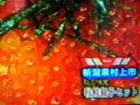 FBS福岡放送 めんたいワイド 産直一直線 鮭の醤油はらこ